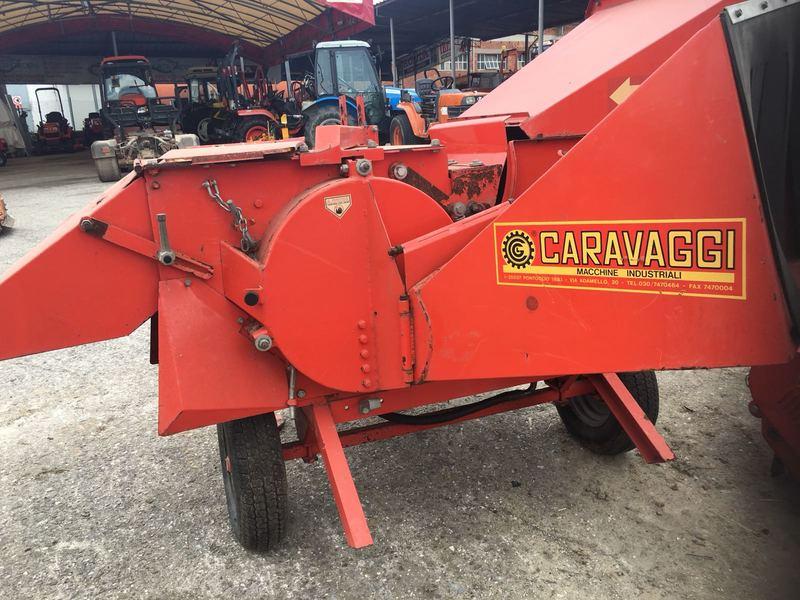 CIPPATORE CARAVAGGI BIO 400-149E5E07-33C6-4143-B3A9-FDF753909035.jpeg